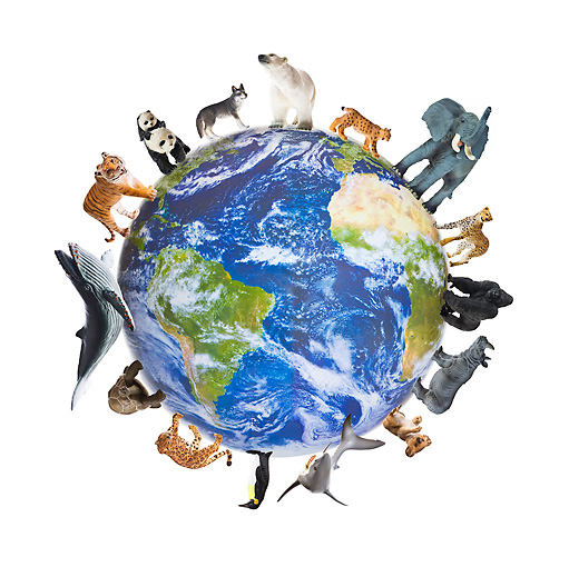 earth with animals